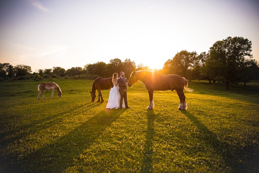 The Oakley Wedding Venue with horses at sunset