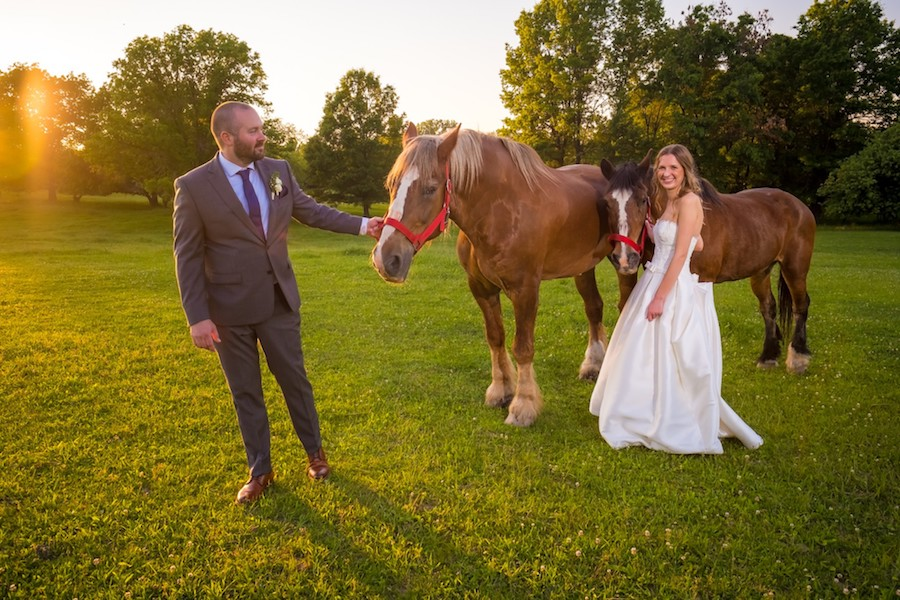 The Oakley Wedding Venue with horses