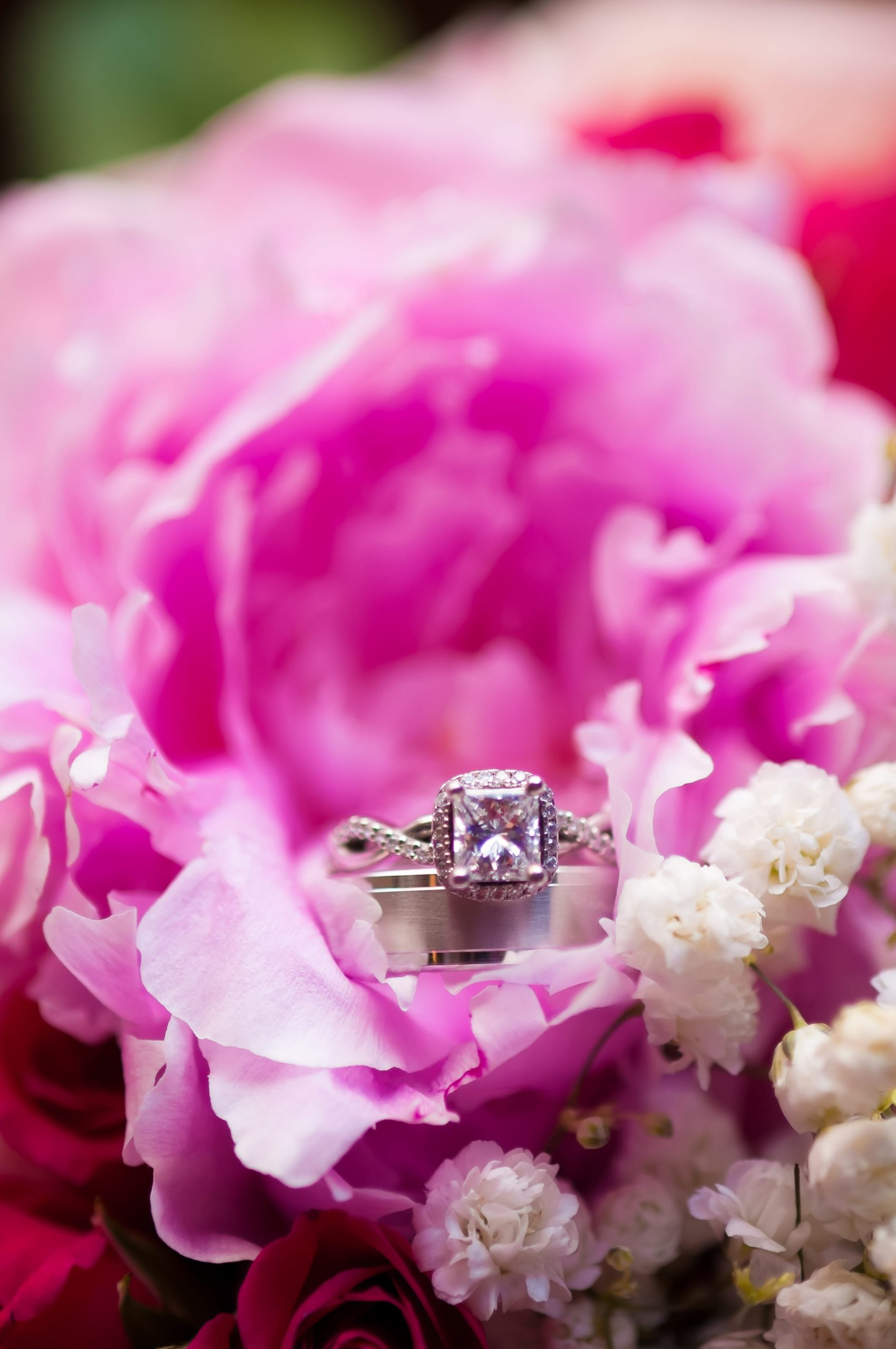 ring details in pink flower