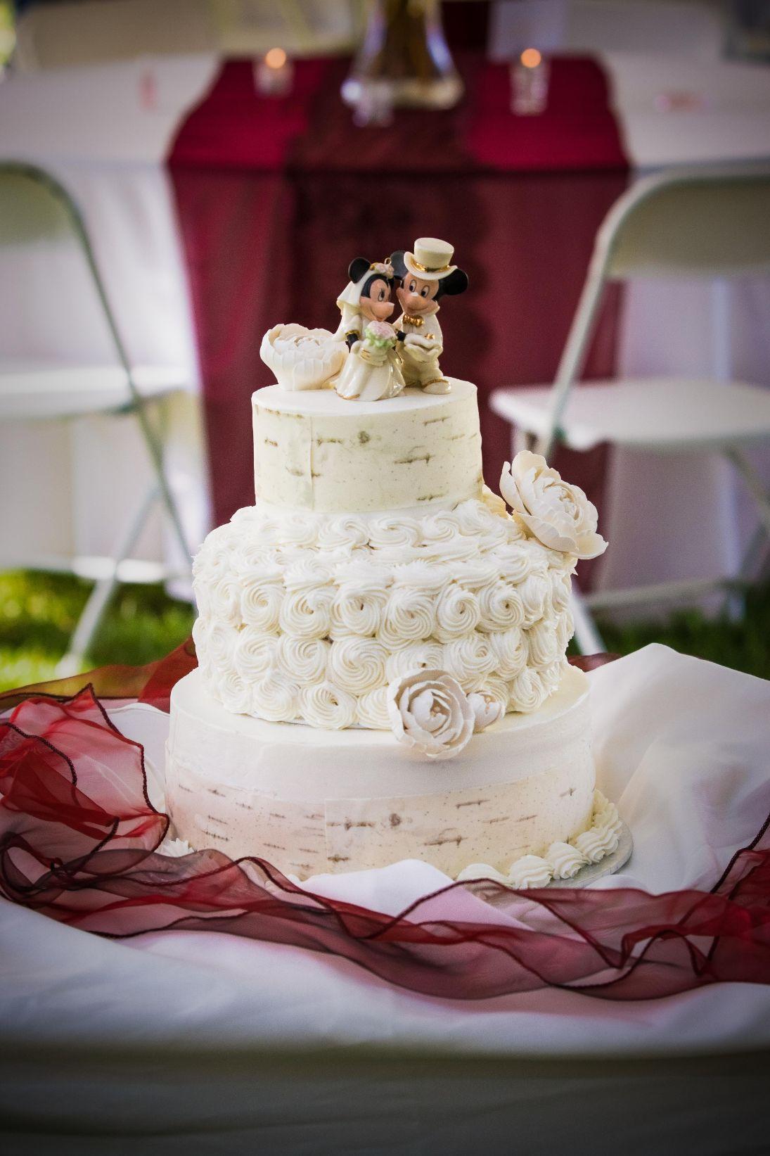 Wedding Cake at outdoor reception 1